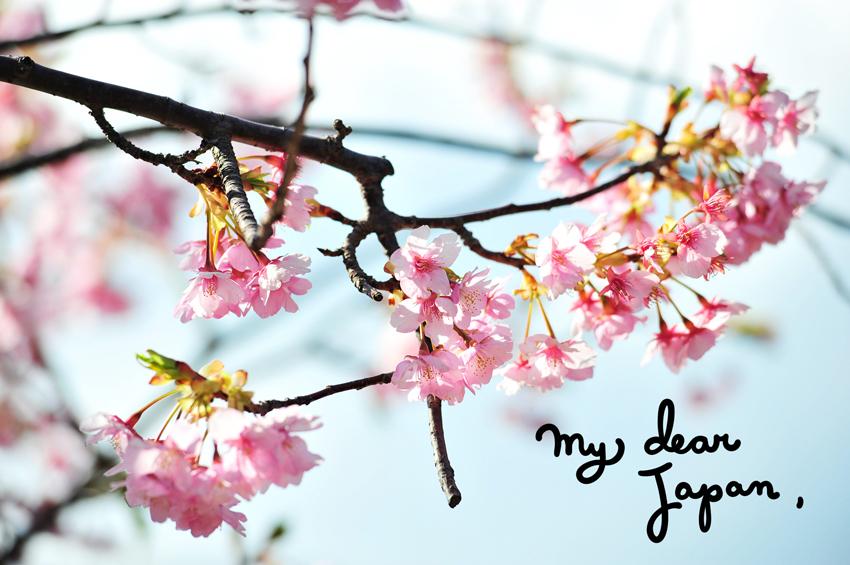 My Dear Japan