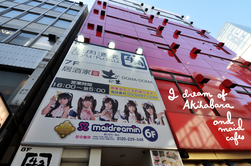 I dream of Akihabara and maid cafes