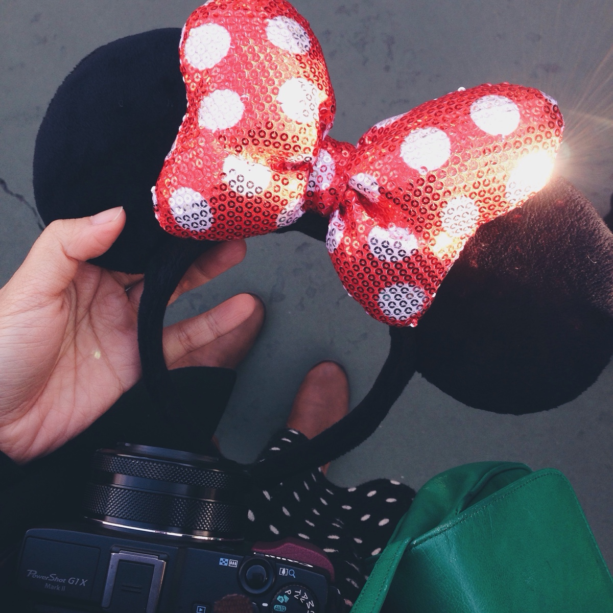minnie-ears.jpg
