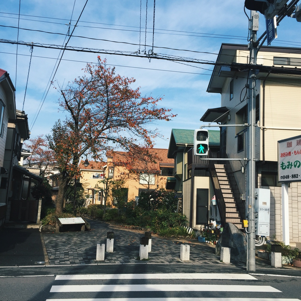 japan-autumn.jpg