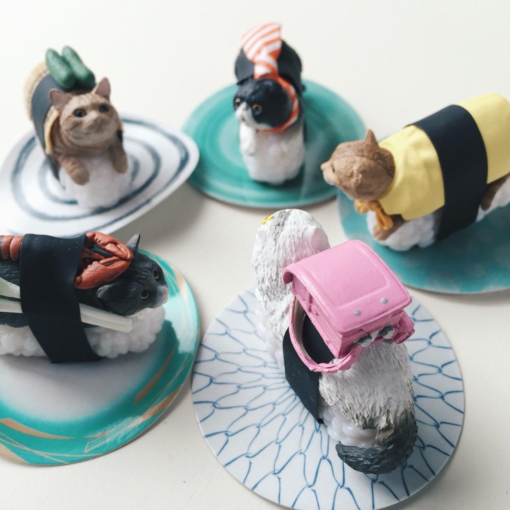sushi-cat.jpg