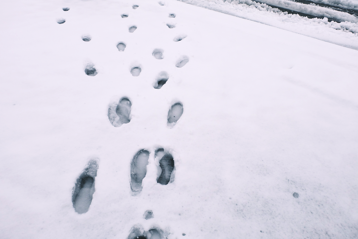 DSCF4050 saitama snow 2016 winter