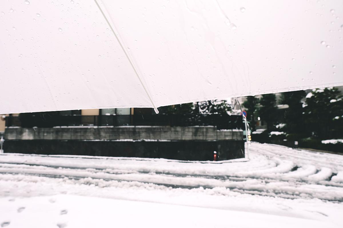 DSCF4051 saitama snow 2016 winter