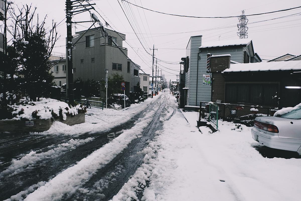 DSCF4053 saitama snow 2016 winter