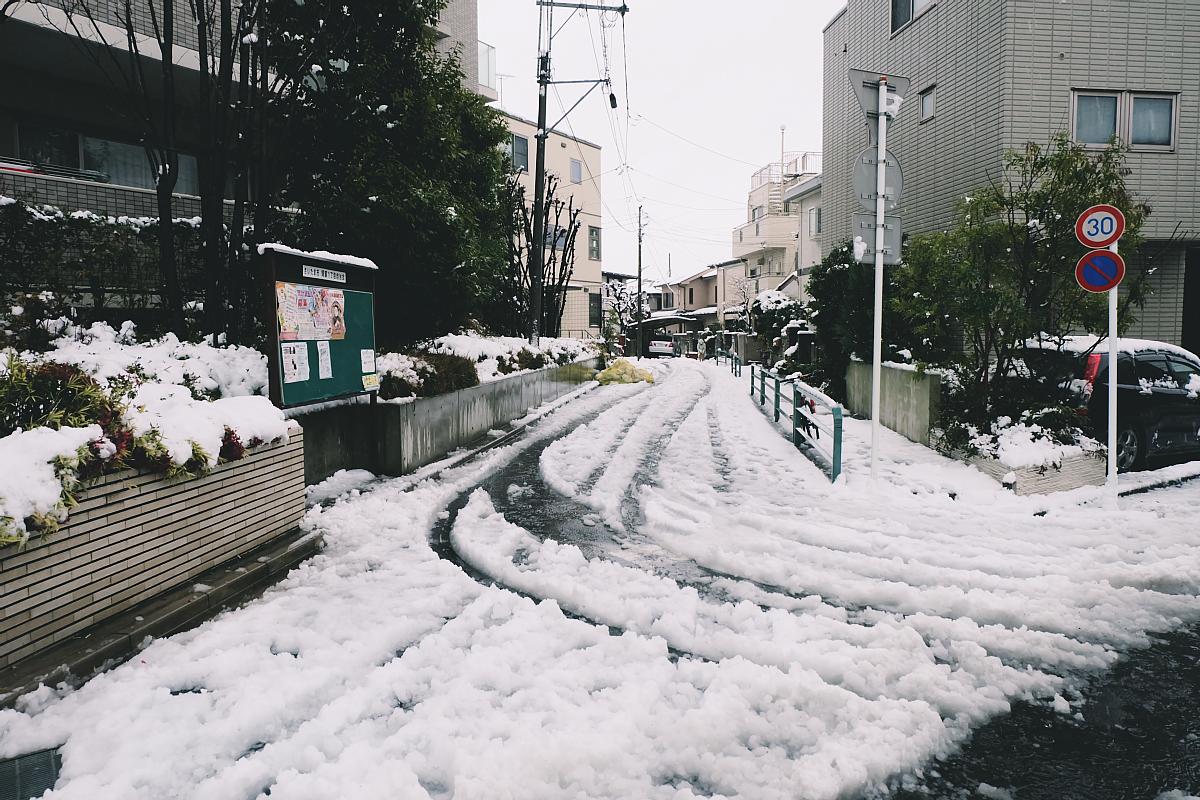 DSCF4055 saitama snow 2016 winter