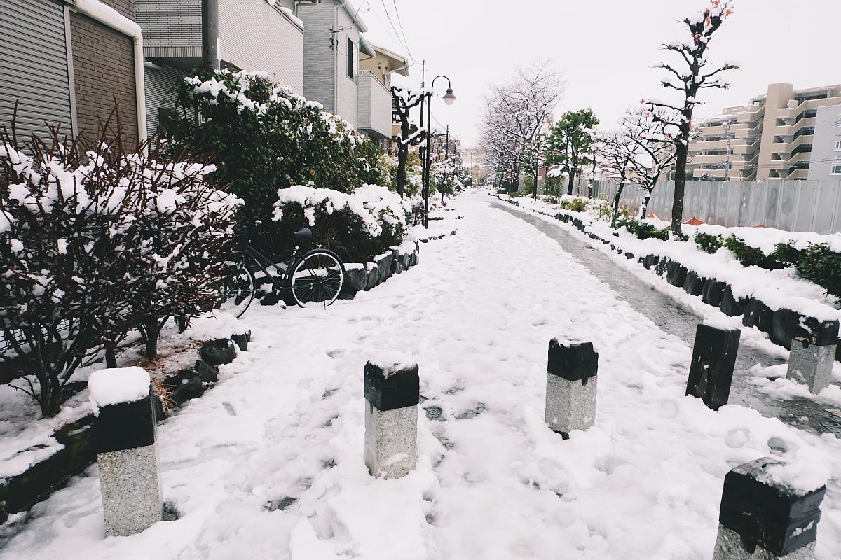 DSCF4058 saitama snow 2016 winter