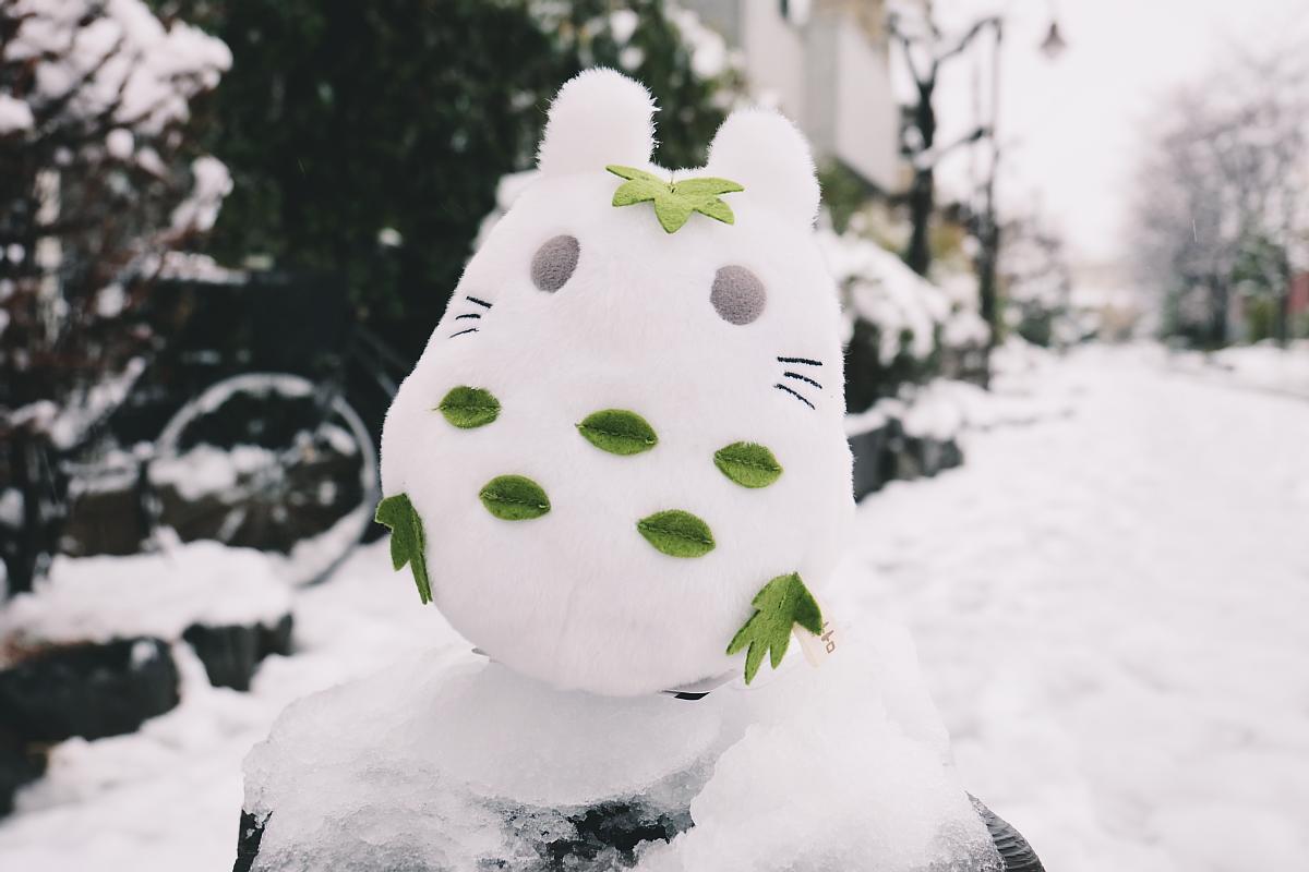 DSCF4060 saitama snow 2016 winter