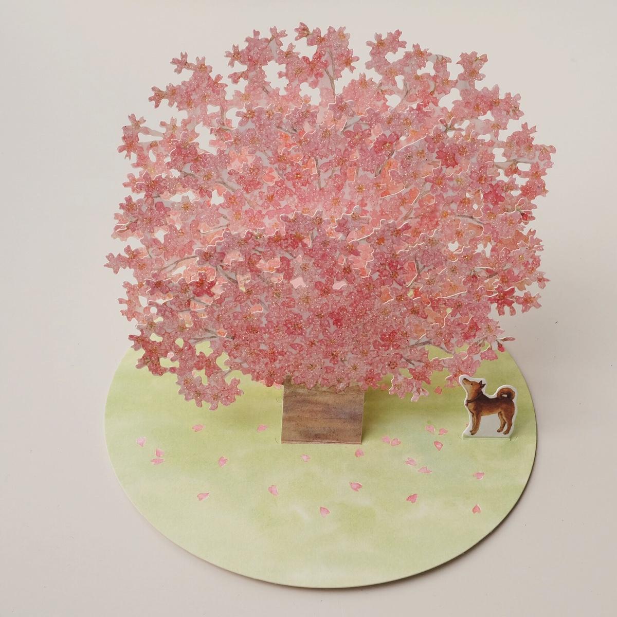 our-kawaii-tokyo-cherry-blossoms.jpg