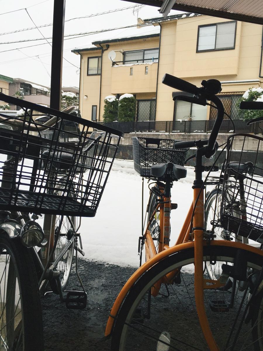 snow-2016-saitama.jpg