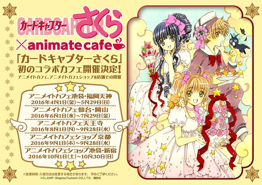 animate cafe cardcaptor sakura