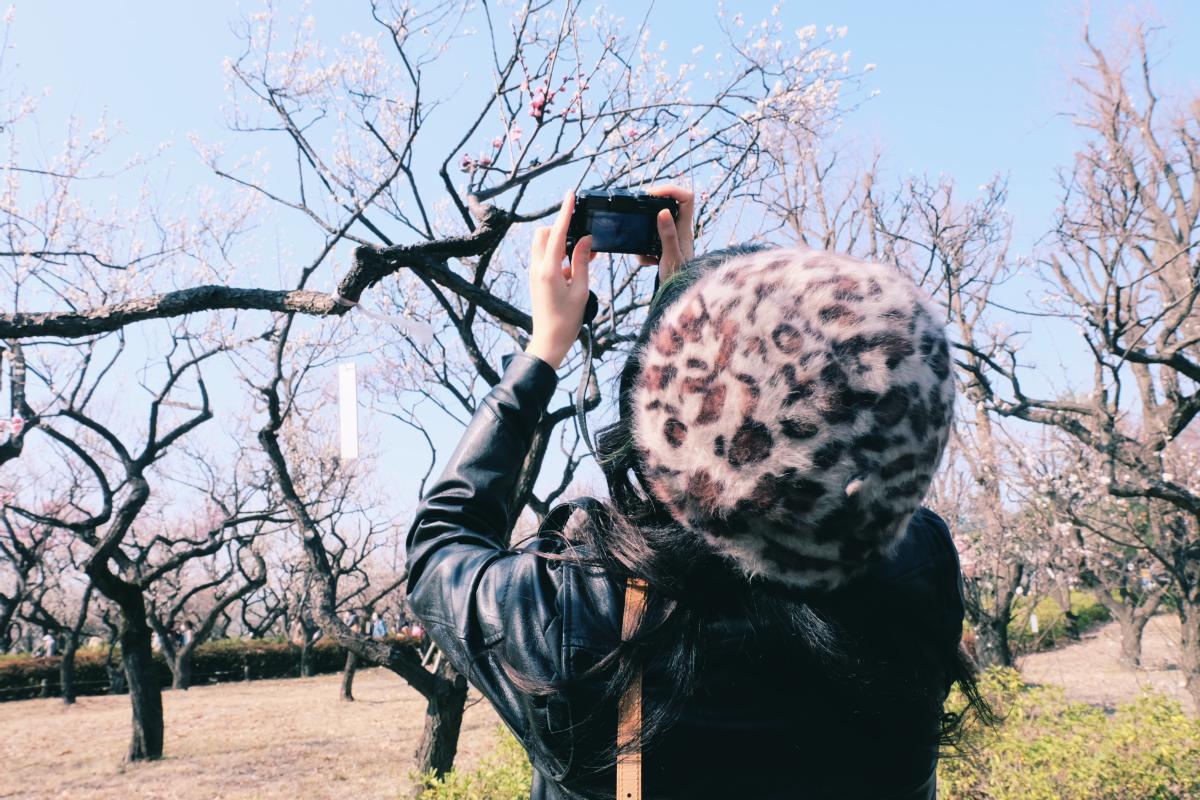tokyo plum blossom viewing ume shimokitazawa 17