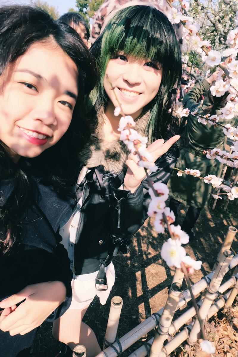 tokyo plum blossom viewing ume shimokitazawa 39