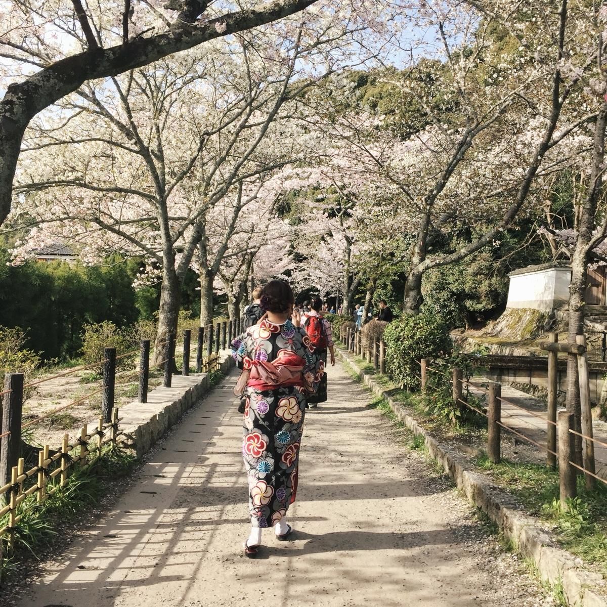 abbey-kimono.jpg