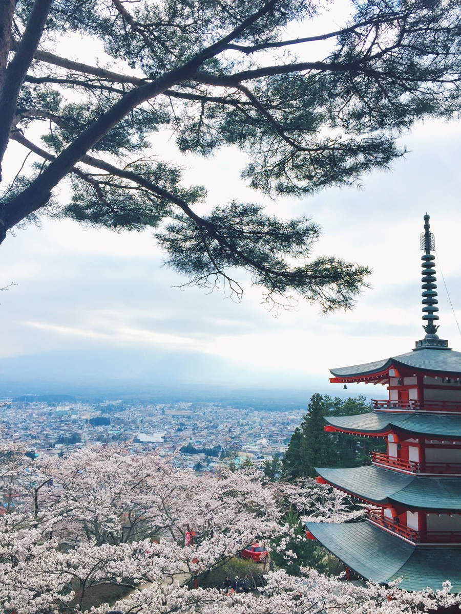 chureito-pagoda-mt-fuji.jpg