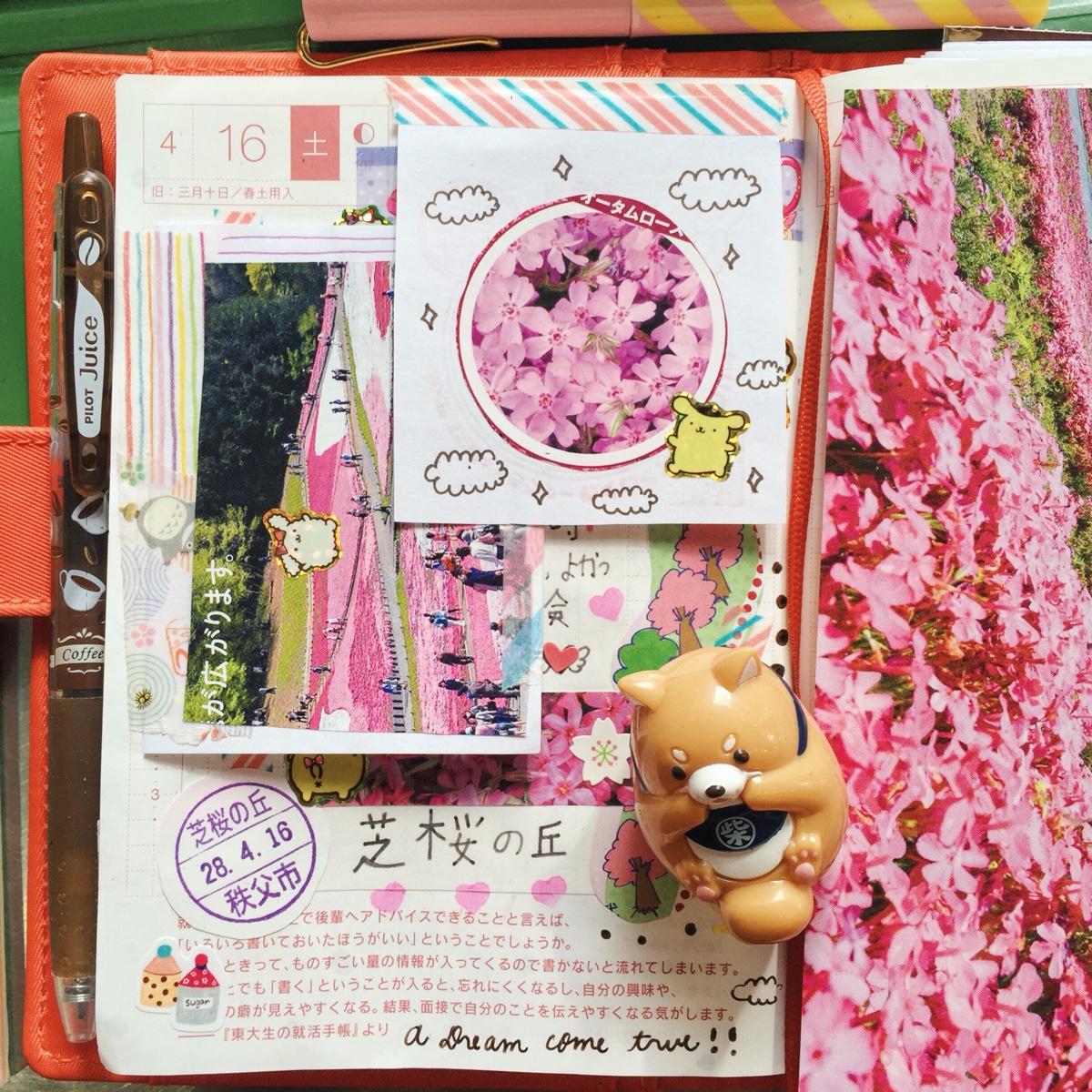 kawaii-hobonichi-diary-rainbowholic-me.jpg
