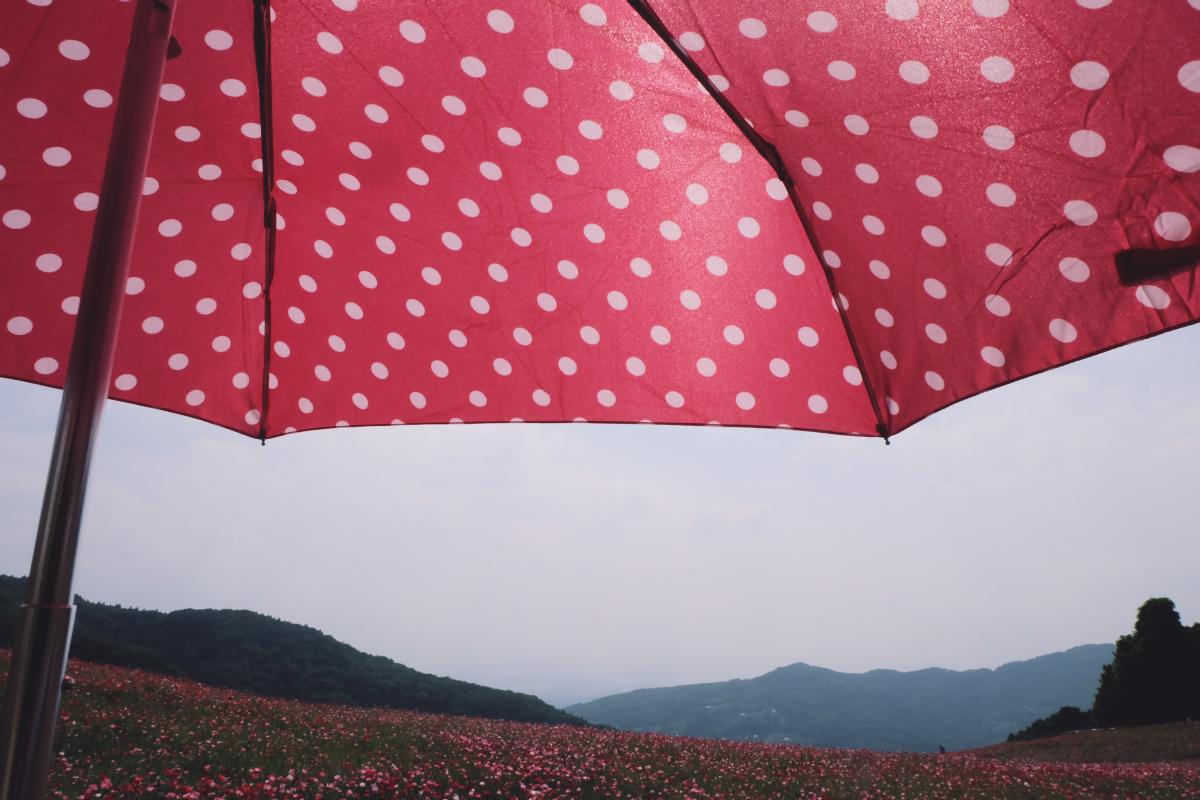 DSCF4711 chichibu poppy flowers 2016 saitama