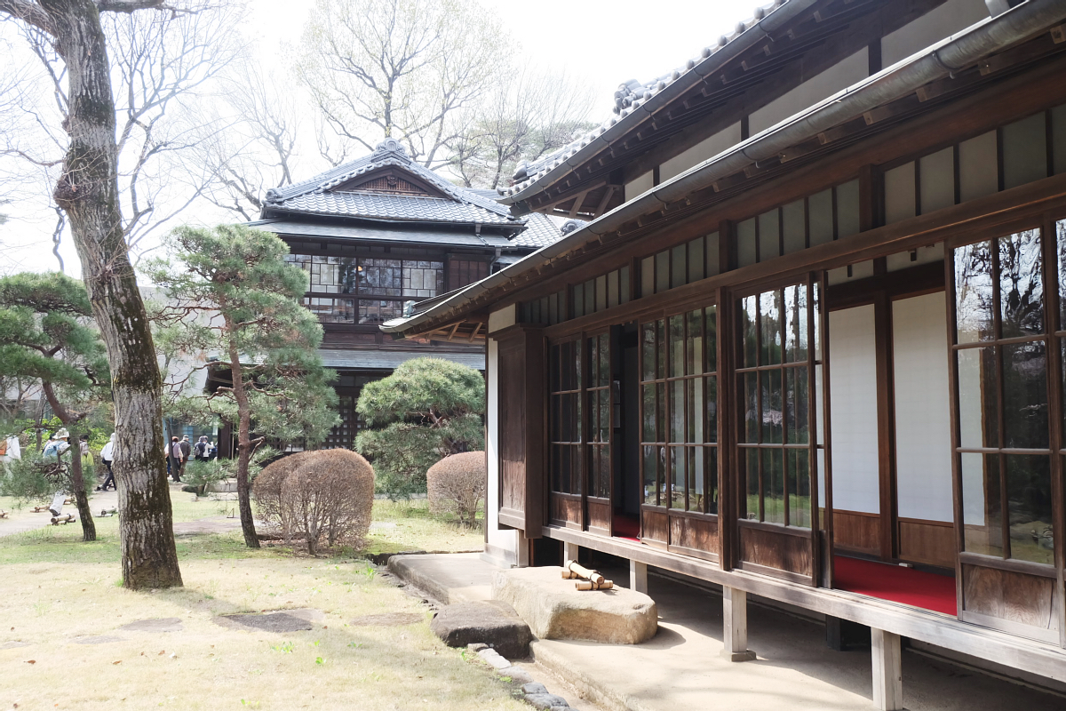 Edo Tokyo Museum Cherry Blossoms 11