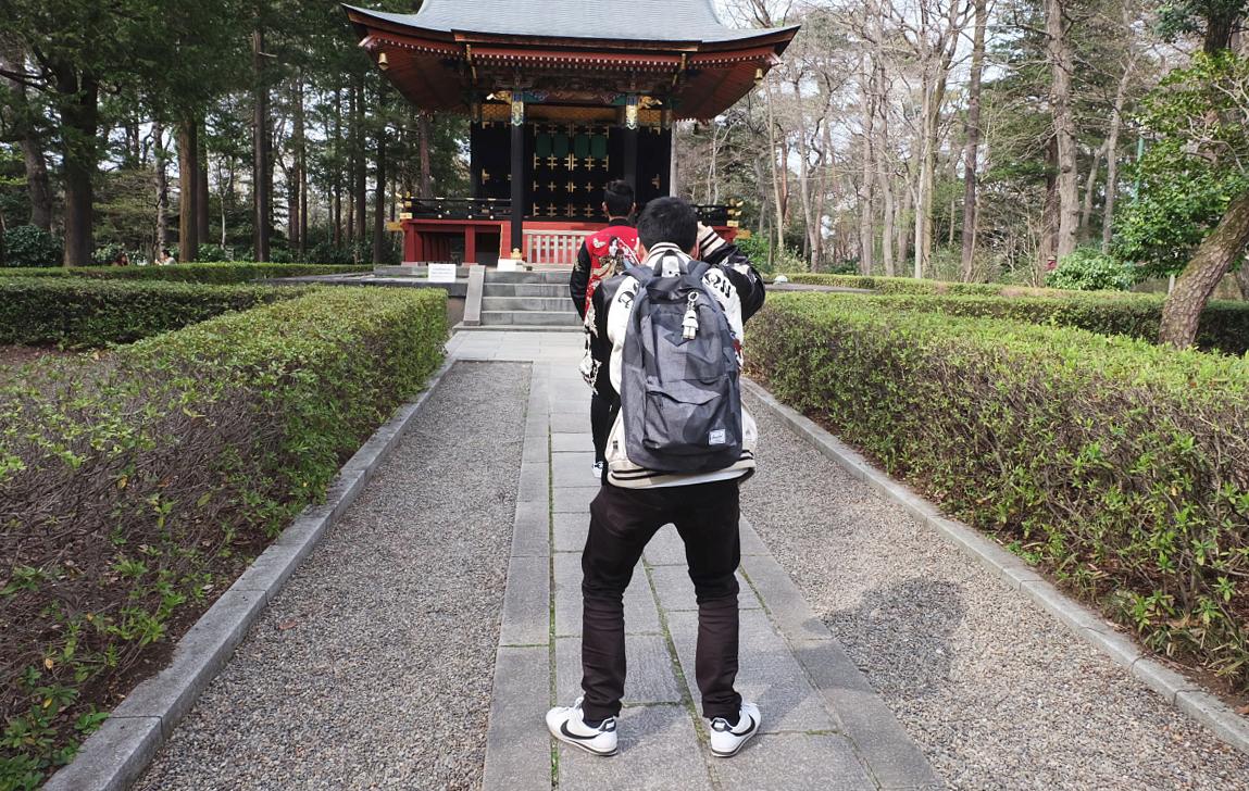 Edo Tokyo Museum Cherry Blossoms 2