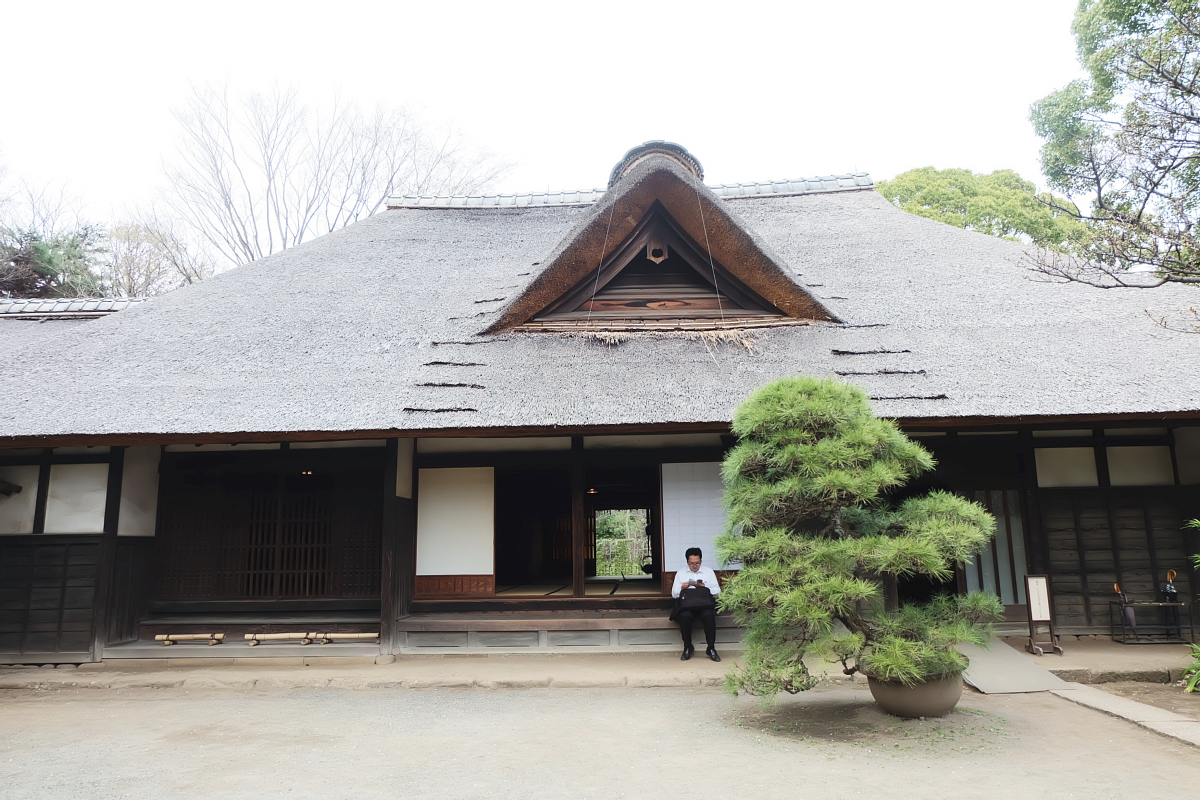 Edo Tokyo Museum Cherry Blossoms 59