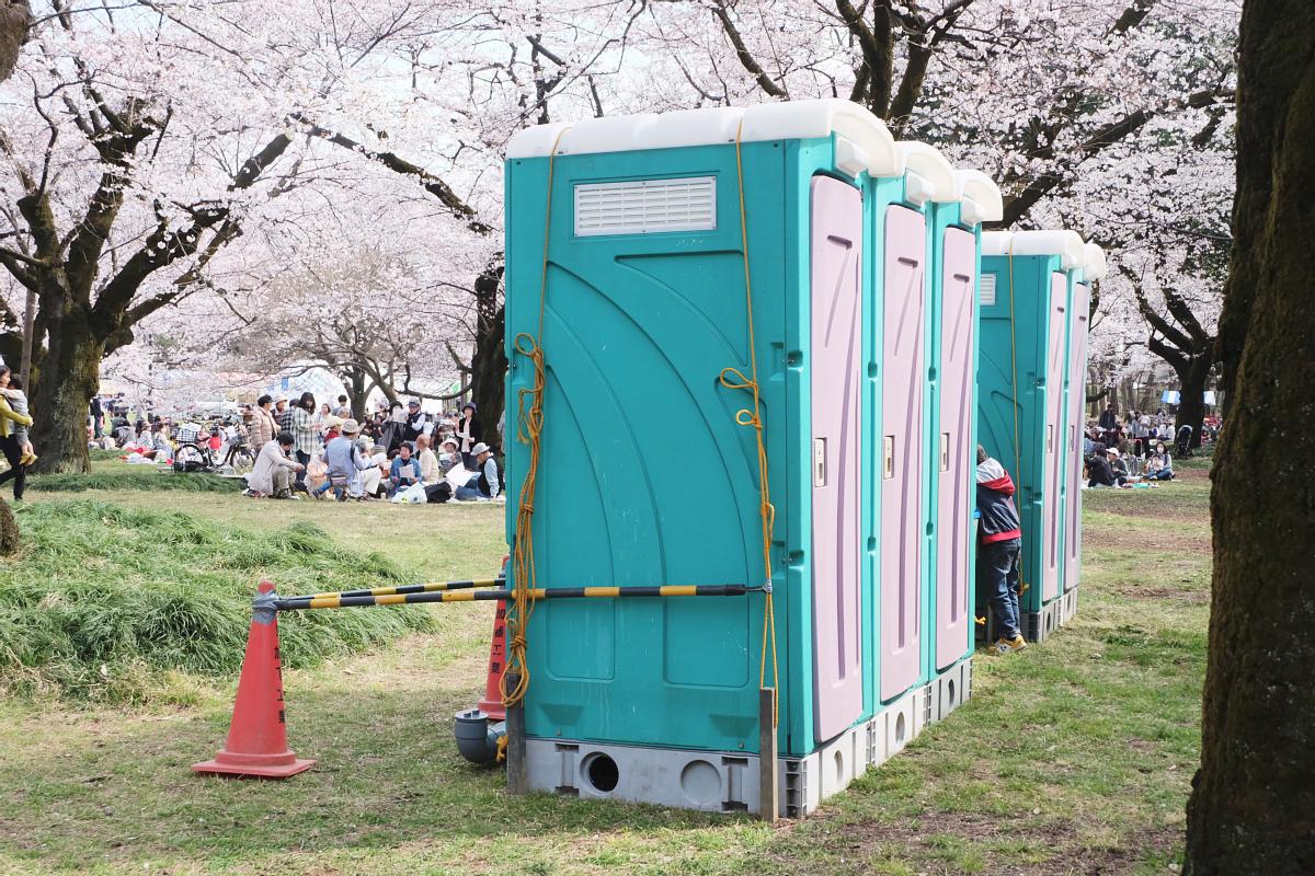 Edo Tokyo Museum Cherry Blossoms 73