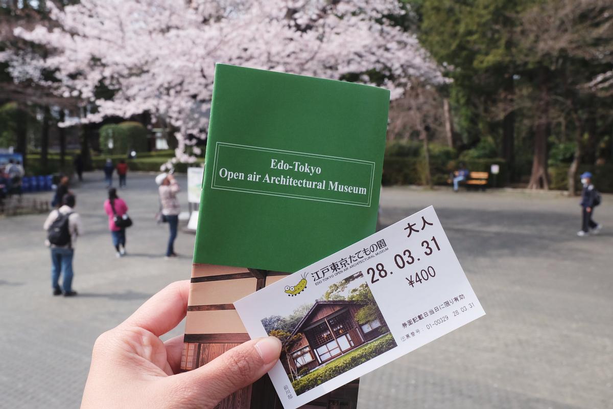 Edo Tokyo Museum Cherry Blossoms 78
