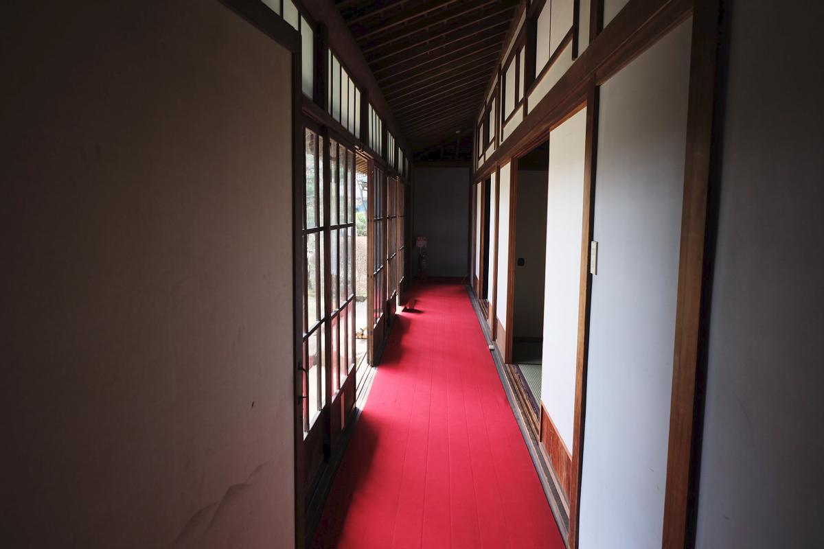 Edo Tokyo Museum Cherry Blossoms 8