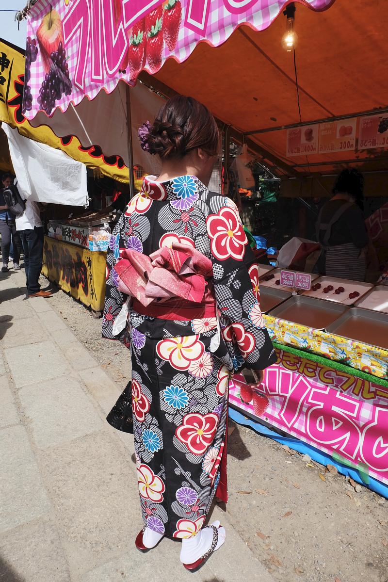 DSCF0961 kyoto sakura cherry blossoms spring 2016