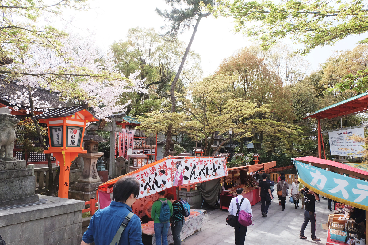DSCF0974 kyoto sakura cherry blossoms spring 2016