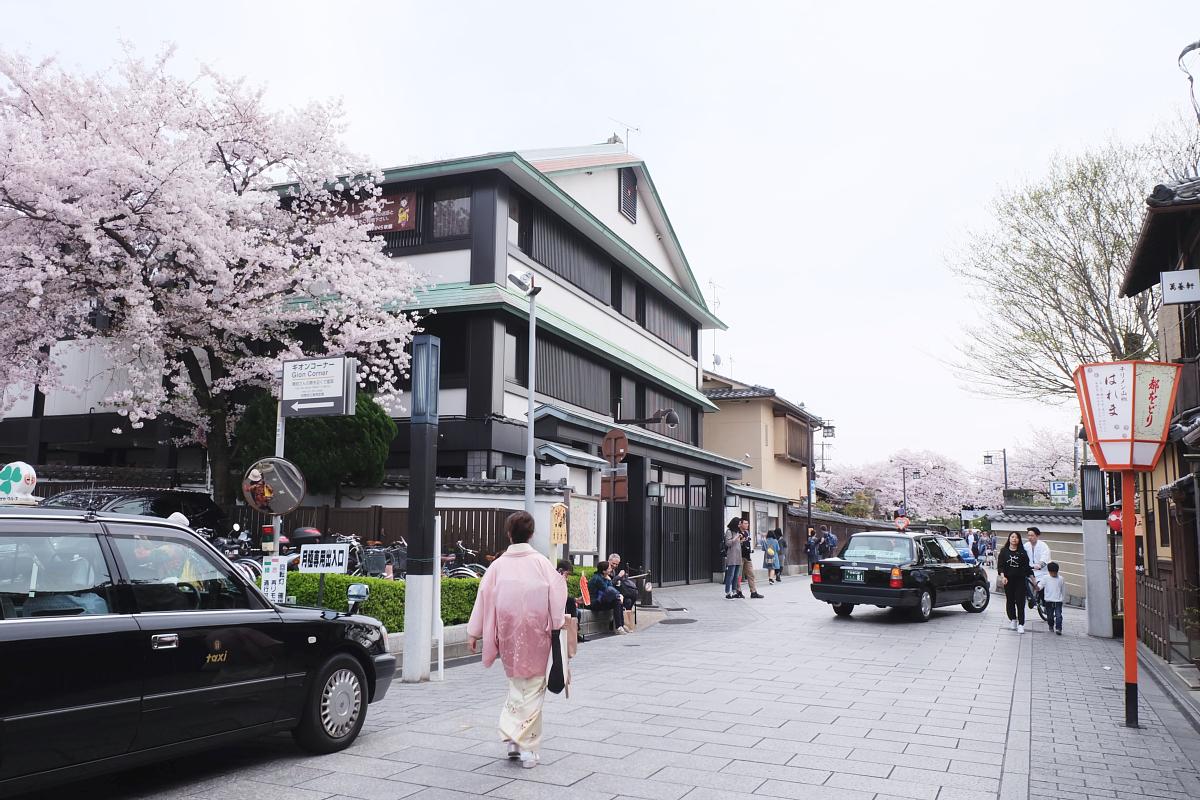 DSCF0985 kyoto sakura cherry blossoms spring 2016