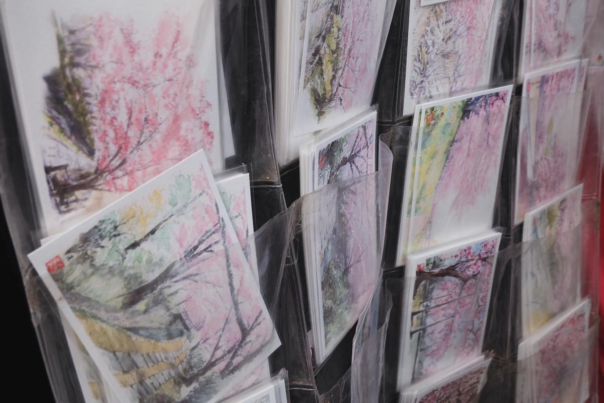 DSCF1031 kyoto sakura cherry blossoms spring 2016