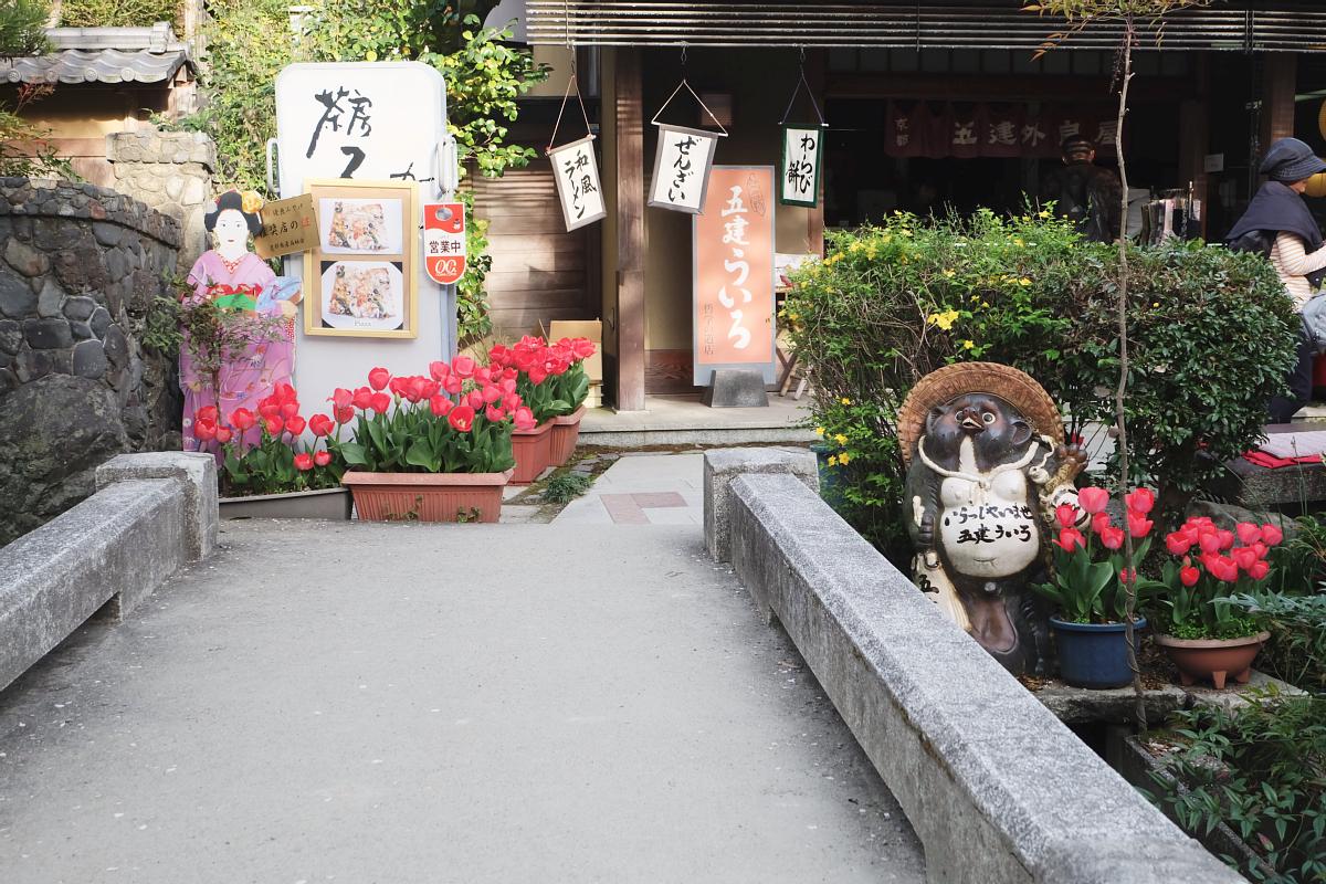 DSCF1040 kyoto sakura cherry blossoms spring 2016