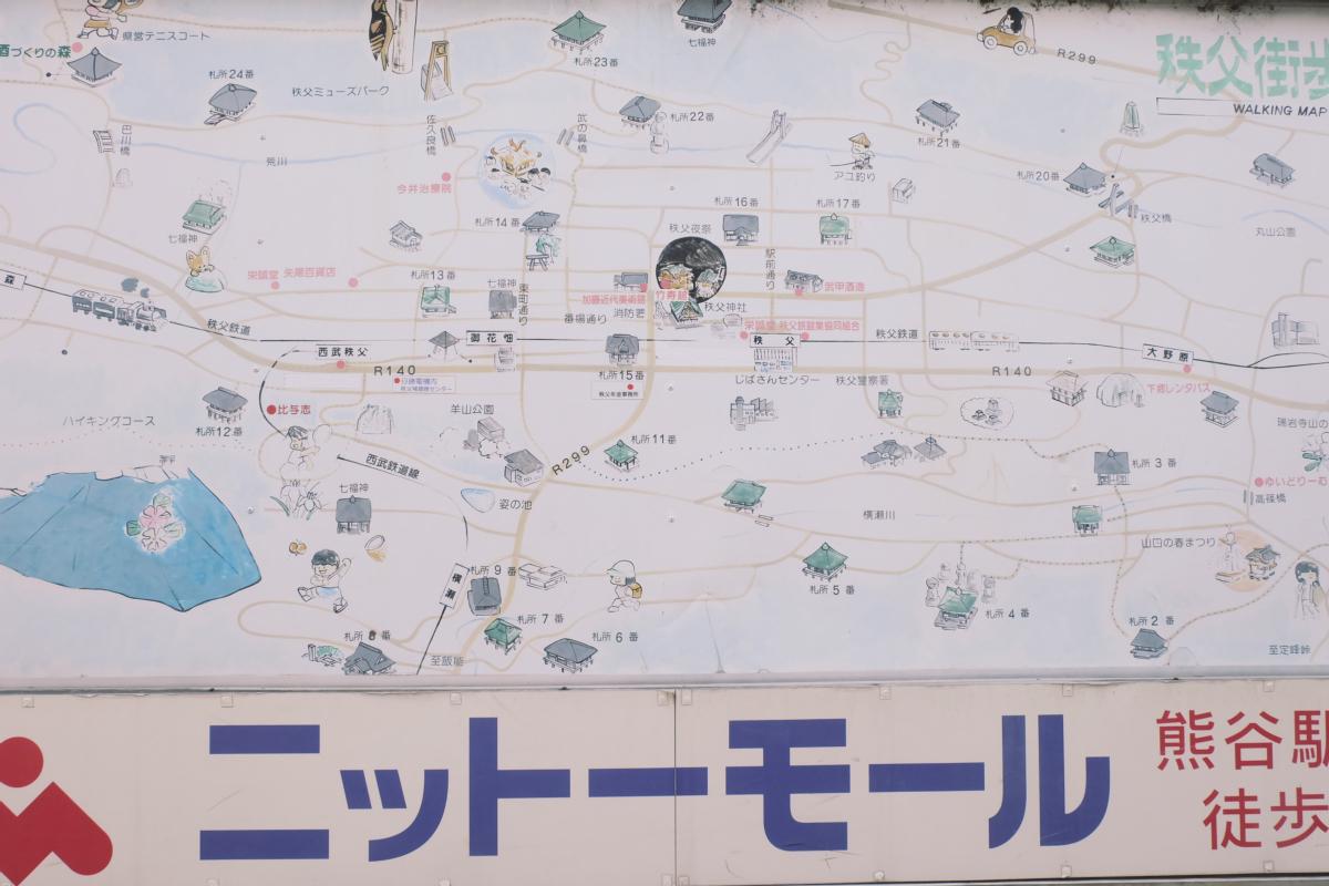 DSCF2058 hitsujiyama park shibazakura chichibu saitama