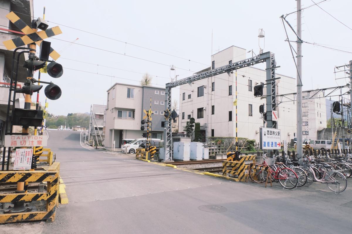 DSCF2059 hitsujiyama park shibazakura chichibu saitama