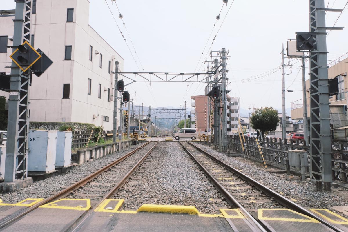 DSCF2060 hitsujiyama park shibazakura chichibu saitama