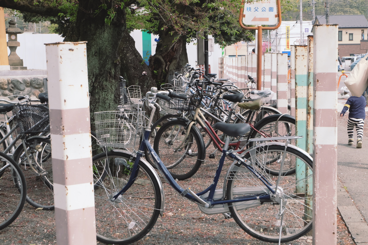 DSCF2063 hitsujiyama park shibazakura chichibu saitama