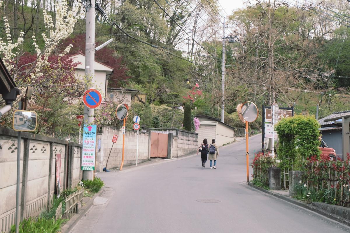 DSCF2067 hitsujiyama park shibazakura chichibu saitama