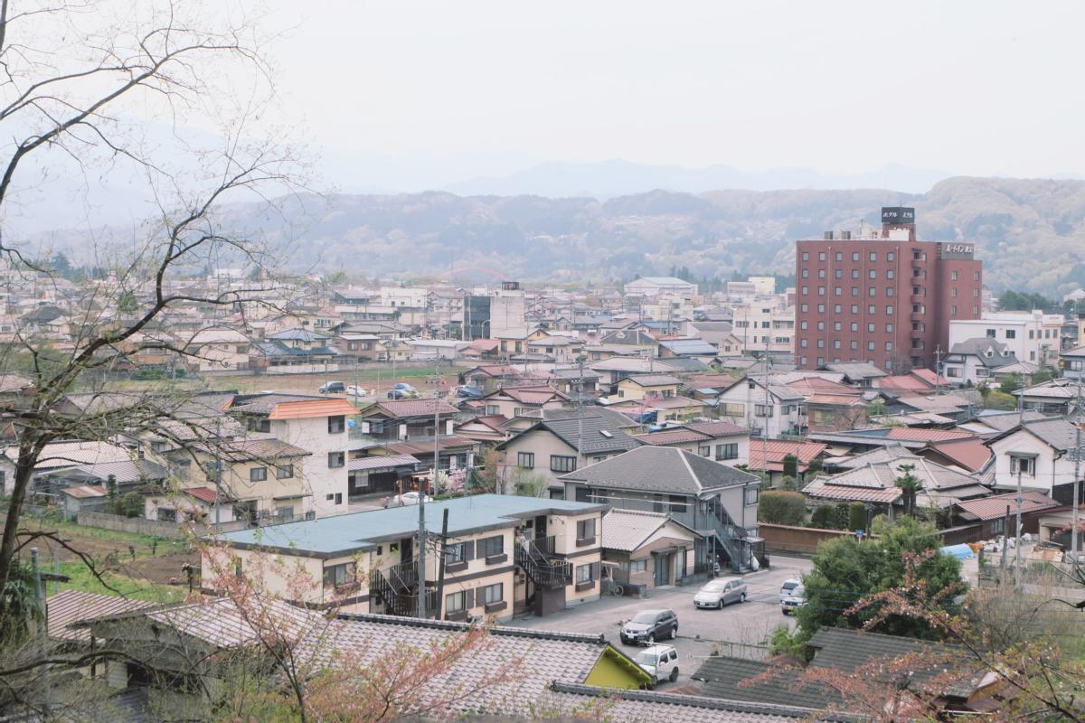 DSCF2071 hitsujiyama park shibazakura chichibu saitama