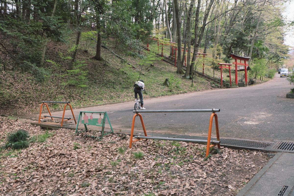 DSCF2075 hitsujiyama park shibazakura chichibu saitama