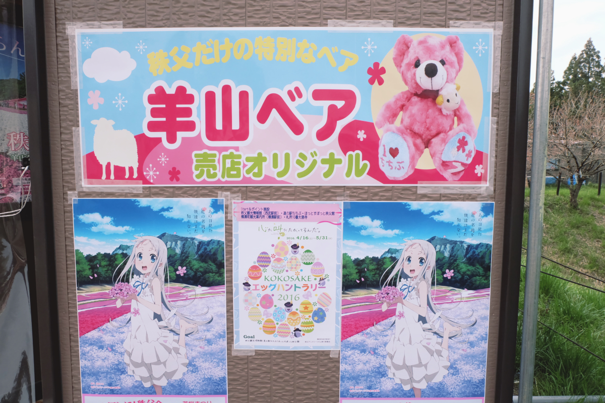 DSCF2138 hitsujiyama park shibazakura chichibu saitama