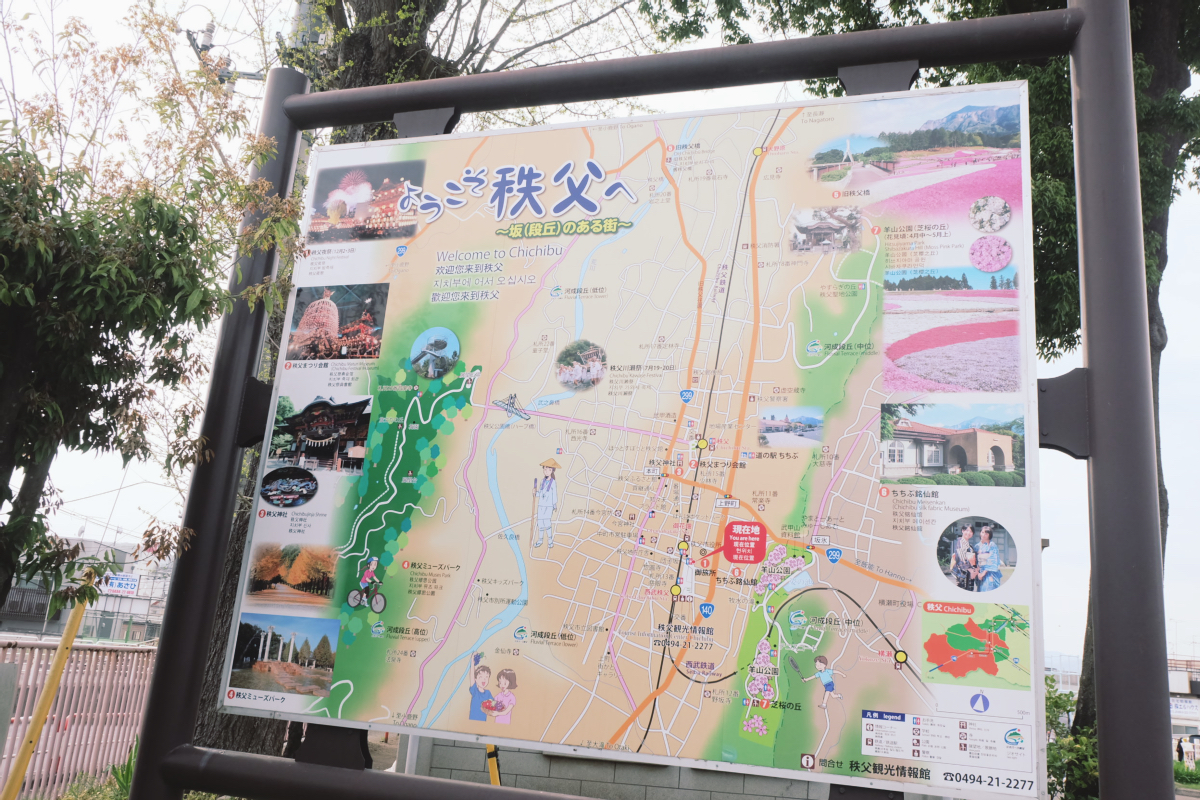 DSCF2157 hitsujiyama park shibazakura chichibu saitama