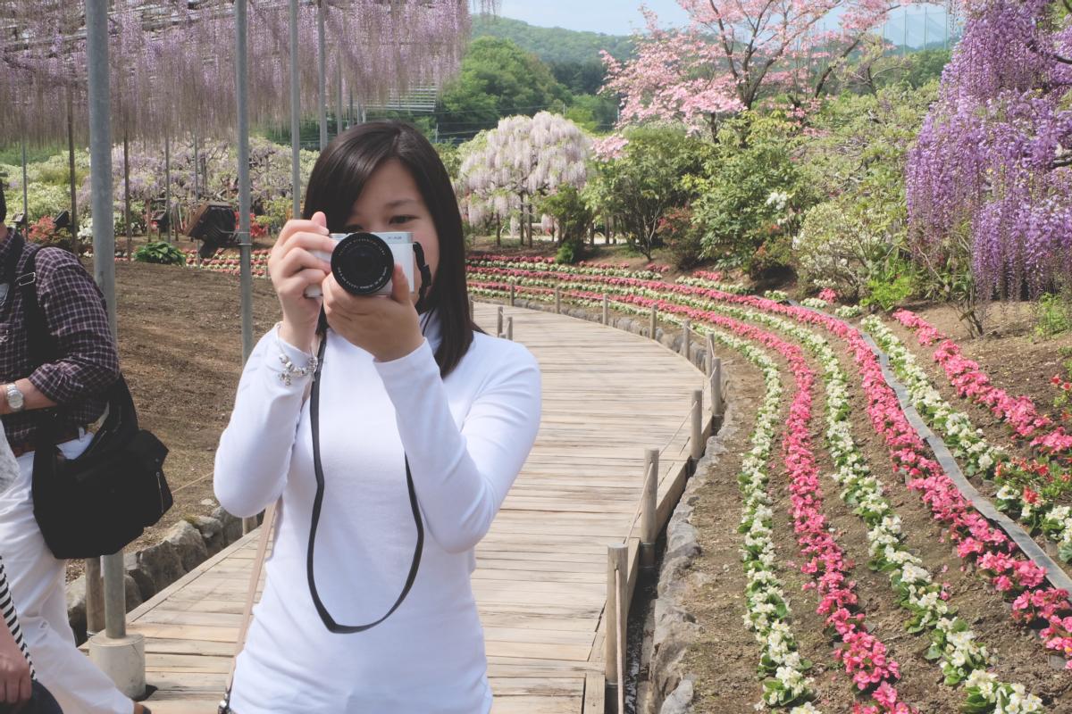 DSCF2851 wisteria ashikaga park