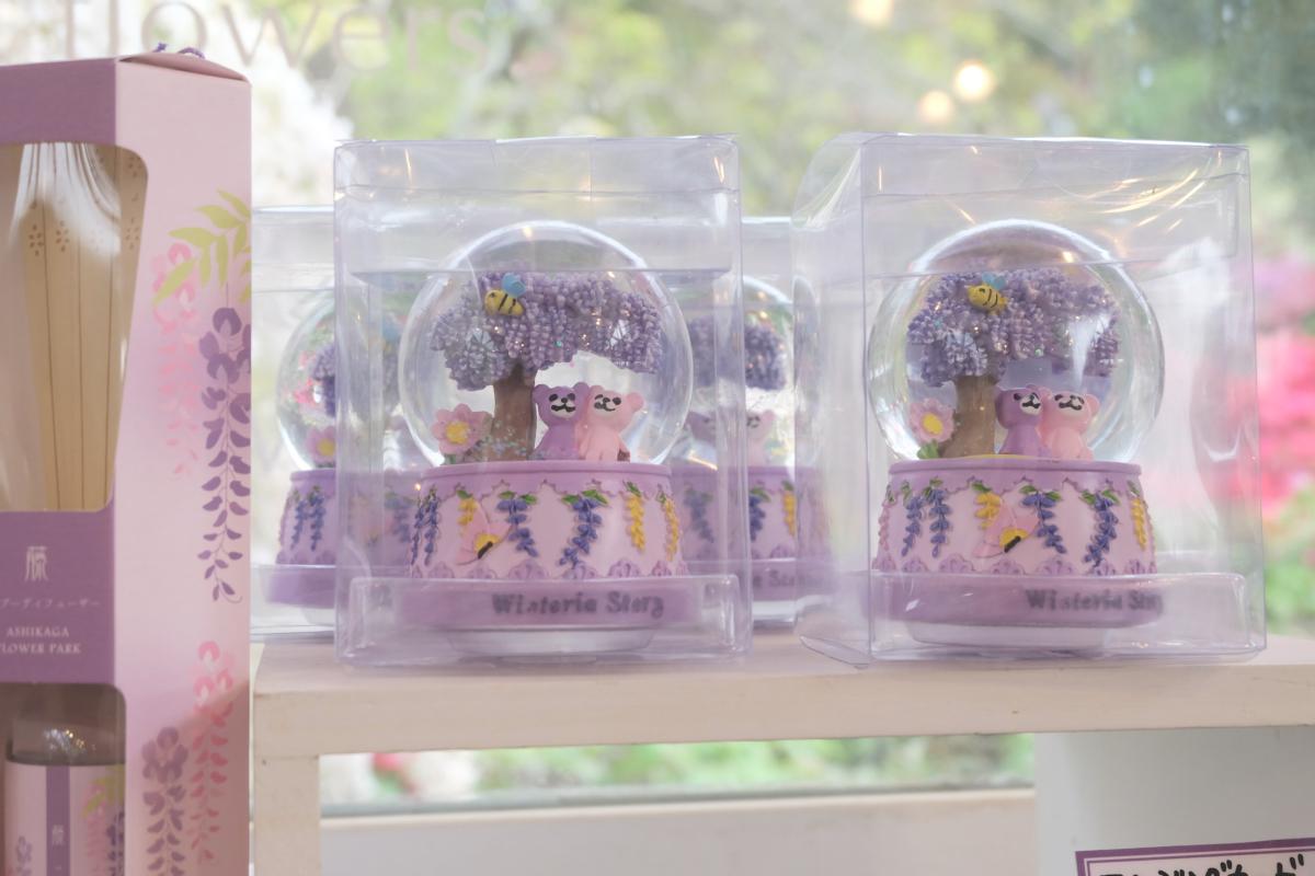 DSCF2951 wisteria ashikaga park