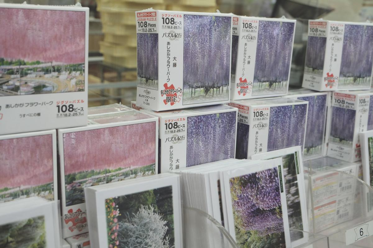 DSCF2968 wisteria ashikaga park