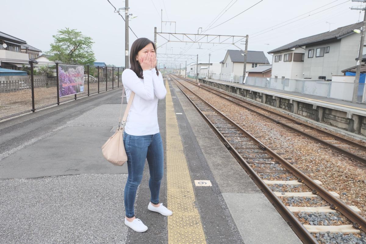 DSCF2980 wisteria ashikaga park