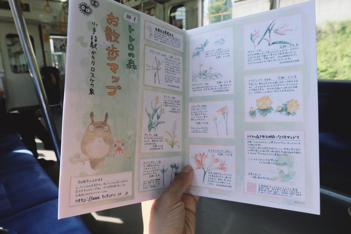 DSCF6959 totoro forest saitama