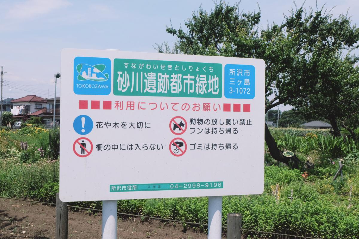 DSCF7002 totoro forest saitama