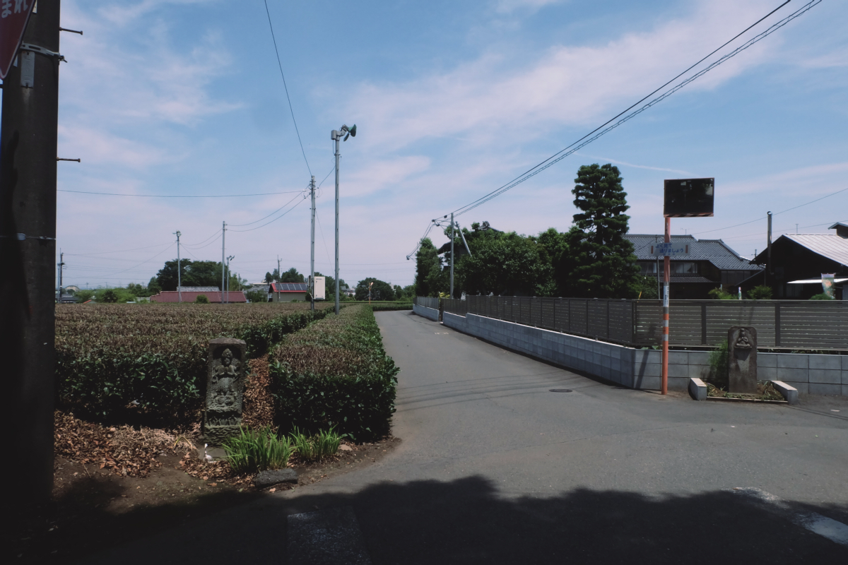 DSCF7009 totoro forest saitama