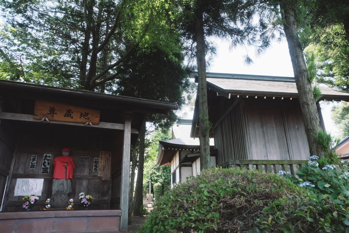 DSCF7011 totoro forest saitama