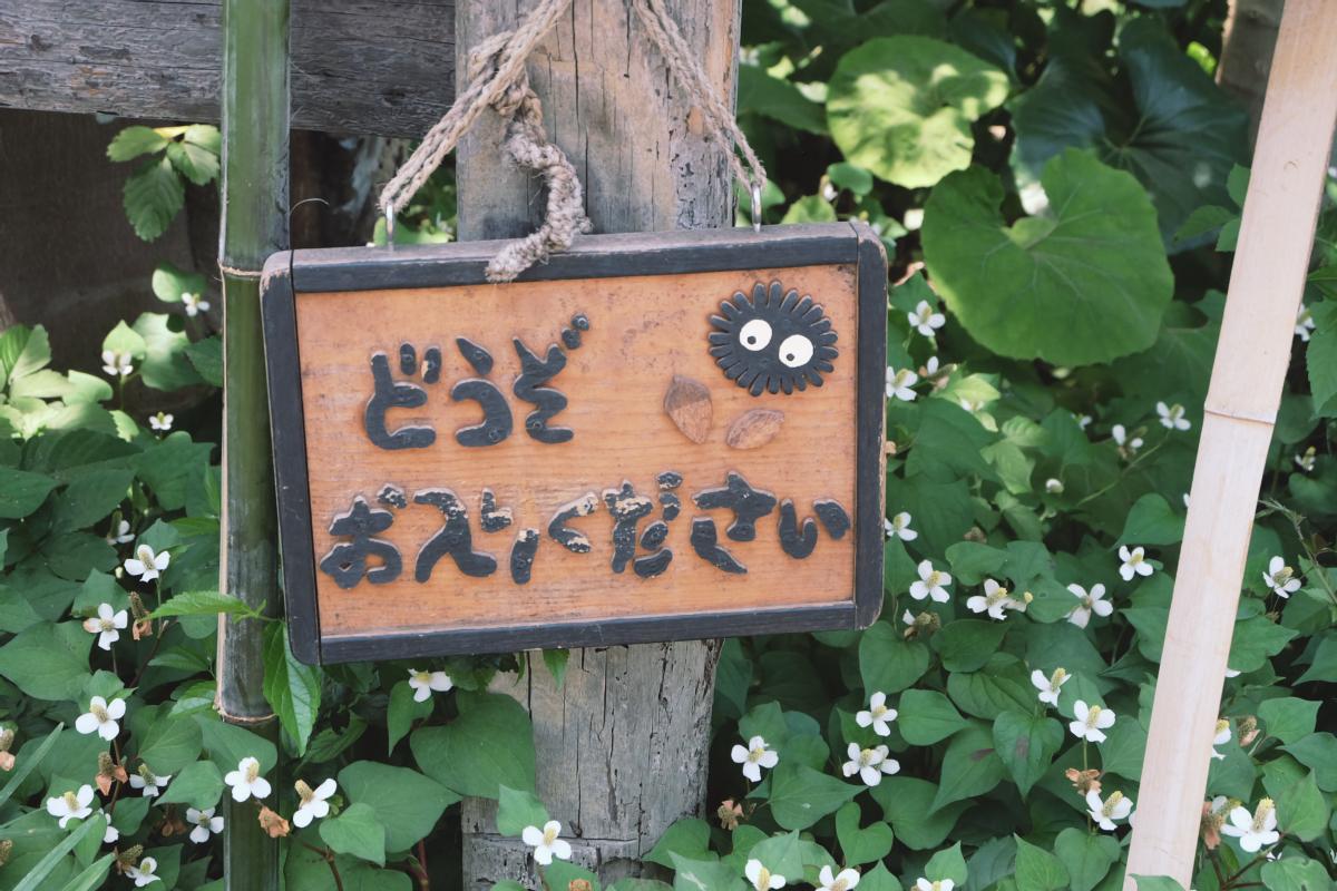 DSCF7027 totoro forest saitama