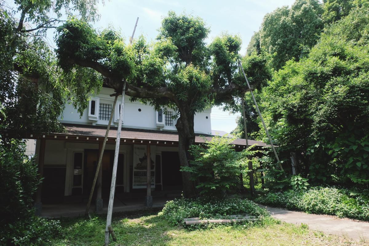 DSCF7029 totoro forest saitama